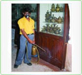 Domestic Pest Control image