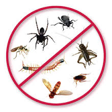 Fusion Pest Managment Services Pvt Ltd