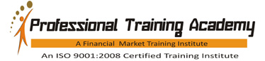 Professional Training Academy