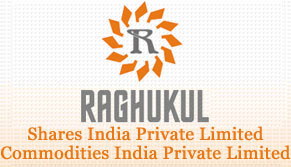Raghukul Shares India Pvt Ltd