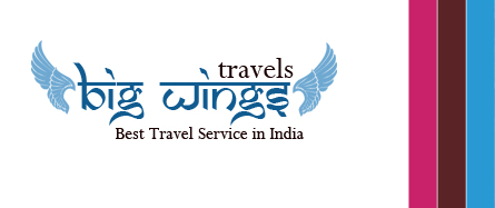 Big Wings Tours And Travels logo